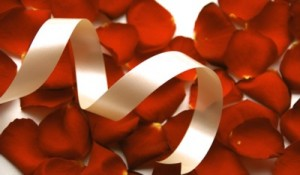 Red petals and white ribbon